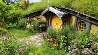 Shore Excursion: Hobbiton and Lord of the Rings Movie Set Tour, Tauranga Tours and Sightseeing