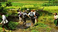 Ba Be National Park discovery with homestay
