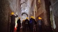 Neros Palace Tour with Colosseum and Ancient City Tours