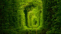 Private Tour to Tunnel of Love