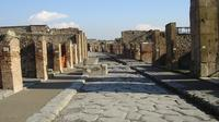 Private Tour: Amalfi Coast and Pompeii Day Trip from Rome