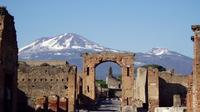Private Tour: Pompeii and Naples from Rome with Lunch and Wine Tasting in a