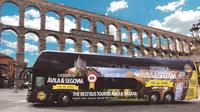 Segovia Guided Walking Tour Included