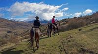 Small-Group Gold Discovery Horse Riding in Cardrona Valley, Wanaka Horse Riding & Horse Trekking
