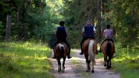2-Day Horse Riding Tour in Sredna Gora from Plovdiv image 1