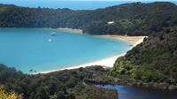 Full-Day Abel Tasman National Park Hiking Tour with Cruise, Nelson Tours and Sightseeing