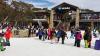 Mt Buller Day Trip from Melbourne image 1