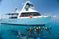 Great Barrier Reef Dive and Snorkel Cruise from Townsville or Magnetic Island, Townsville Diving & Snorkelling
