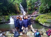 Lamington National Park Hiking Tour from the Gold Coast: Picnic Rock or Tooloona Creek image 1