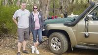 Kangaroo Island 4WD Full-Day Tour - Flinders Chase National Park image 1