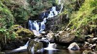 Ring of Kerry Day Tour from Limerick Including Torc Waterfall image 1