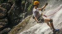 Waterfall Rappelling and Zipline Adventure at Bocawina Rainforest image 1