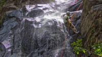 Waterfall Rappelling at Bocawina Rainforest