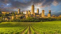 San Gimignano & Wine: great wine experience - shared tour from Greve in Chianti