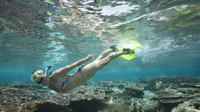 Snorkeling Package at Padangbai with Lunch
