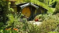 Full-Day Shore Excursion: Hobbiton and Te Puia Combo, Tauranga Tours and Sightseeing
