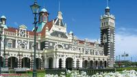 Shore Excursion: Dunedin Highlights Small-Group Tour, Dunedin Tours and Sightseeing