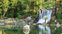 Shore Excursion: Te Puia and Rainbow Springs from Tauranga, Tauranga Tours and Sightseeing
