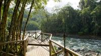 Overnight Pacuare River and Rafting Trip from San Jose