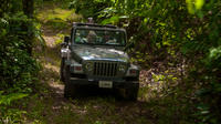 Jungle Jeep Adventure from Belize City image 1
