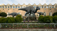 Small Group Tour to Fernbank Museum of Natural History