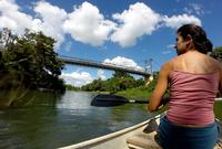 Macal River Canoeing and Rainforest Medicinal Trail
