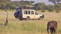 Full-Day Lake Manyara Tour from Arusha