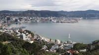 Wellington City Scenic Tour, Wellington City Tours and Sightseeing
