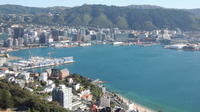 Wellington Shore Excursion: City Scenic Private Tour, Wellington City Tours and Sightseeing
