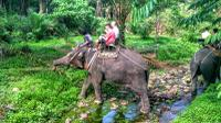 Huay Tho Waterfall Safari with Elephant Trekking and Bathing in Krabi