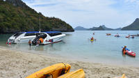 Snorkel and Kayak Trip to Angthong Marine Park by Speed Boat from Koh Phangan