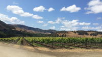 Santa Barbara Wine Lovers Tour