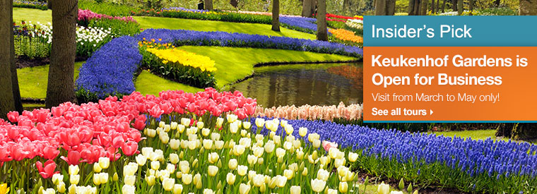 Amsterdam Shore Excursions