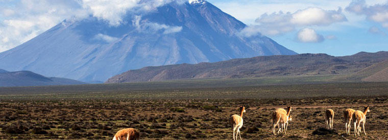Arequipa Multi-day & Extended Tours
