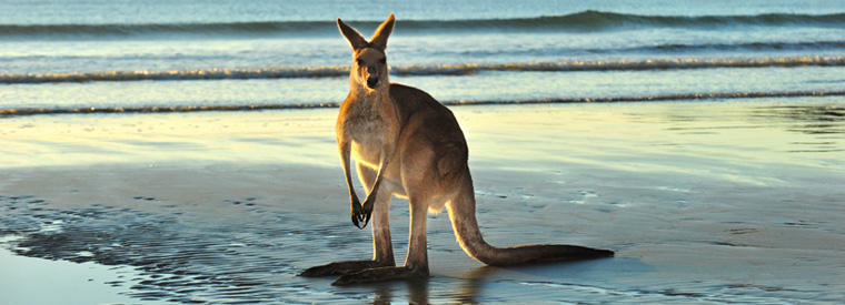 Australia Tours & Sightseeing