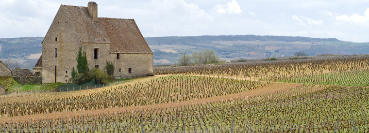 Bordeaux Wine Tasting & Winery Tours