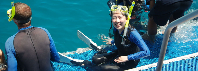 Cairns & the Tropical North Scuba & Snorkelling Tours | tourist visit