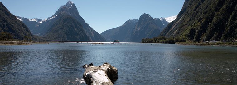 Fiordland & Milford Sound Walking & Biking Tours