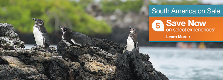 Galapagos Islands Deals and Discounts