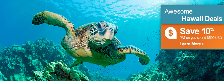 All things to do in Maui