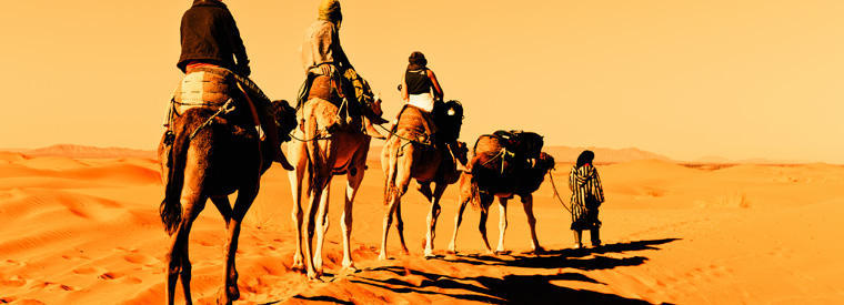 Morocco Tours & Sightseeing