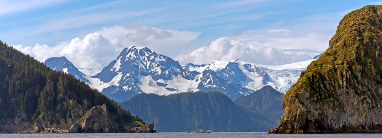 Seward Cruises, Sailing & Water Tours