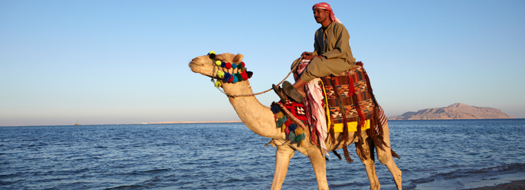 Sharm el Sheikh Air, Helicopter & Balloon Tours