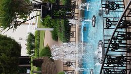 Just one of many beautiful photos of the grounds of Graceland. Highly recommend the VIP tour. Well worth the extra money, no lines and audio and i-pad provided. , Sandie B - May 2015
