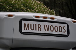 Photo of San Francisco Muir Woods and Sausalito Tour plus Bay Cruise buss