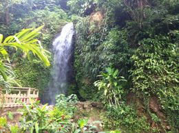 The waterfall, right before we jumped in. Everyone had the option to visit the waterfall or take a mud bath. , Ryan P - September 2012