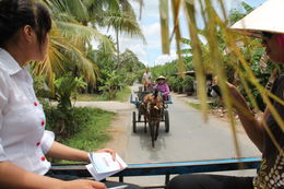 Photo of Ho Chi Minh City Mekong Delta Discovery Small Group Adventure Tour from Ho Chi Minh City on the road