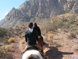 Photo of Las Vegas Morning Maverick Horseback Ride with Breakfast PICT0106