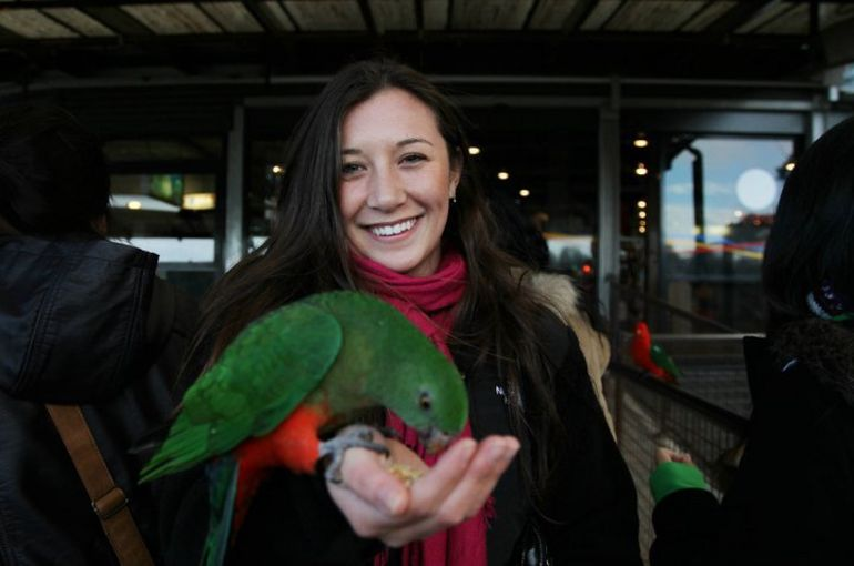 Playing with the wild parrots! - Sydney