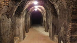 Photo of Rome Frascati Wine Tasting Tour from Rome Underground caverns